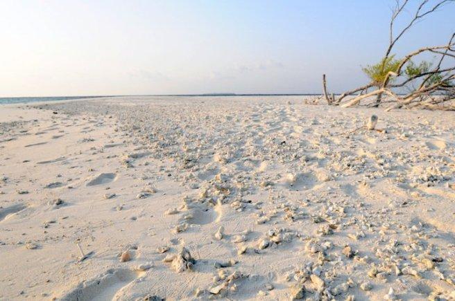 Maldives07