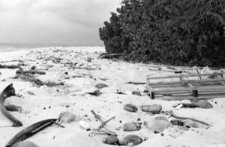 Maldives20