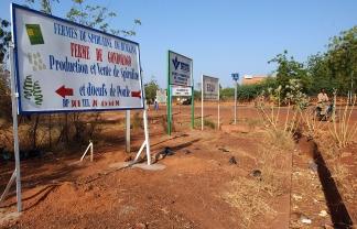 """A Ouahigouya, un panneau """"publicitaire"""" indique l'existence d'une ferme de spiruline alentour. Le but est de rendre l'algue plus connue de tous et plus accessible a tous. Ouahigouya, BURKINA FASO - 06/12/2005"""
