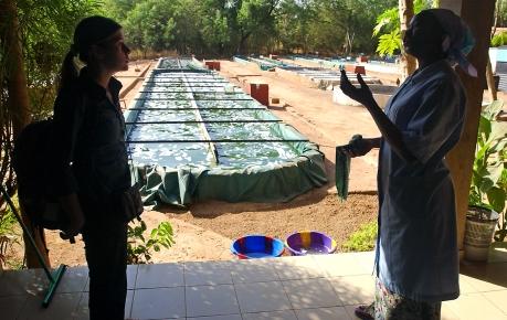 Sarah Baudry s'entretient avec la chargee d'exploitation d'une des fermes du Burkina. Ce sont les femmes qui sont majoritairement presentes dans ce milieu. Koudougou, BURKINA FASO - 08/12/2005